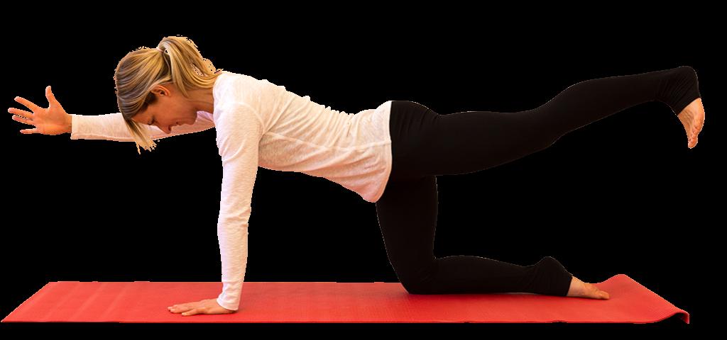 Yoga-Kurse für Anfänger und Fortgeschrittene